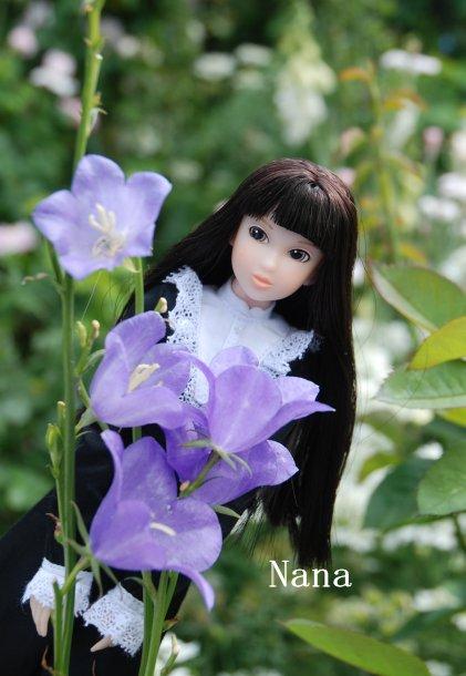 rosegarden1-16.jpg