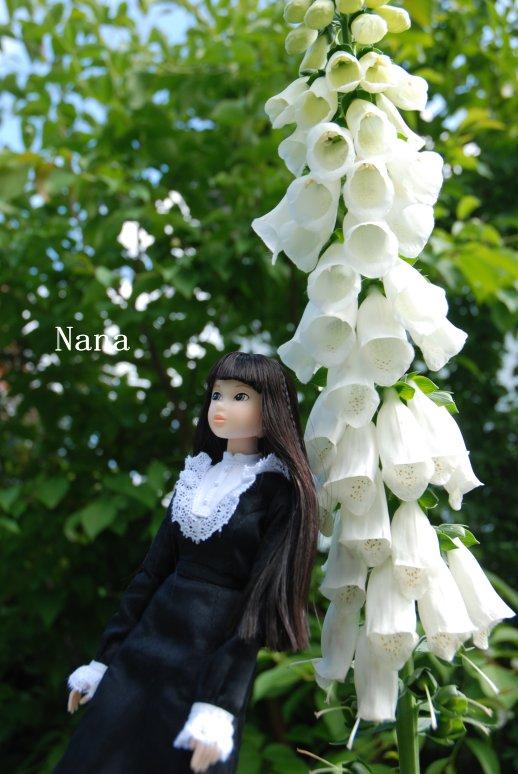 rosegarden1-17.jpg