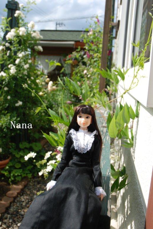 rosegarden1-18.jpg