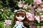 rosegarden1-1.jpg