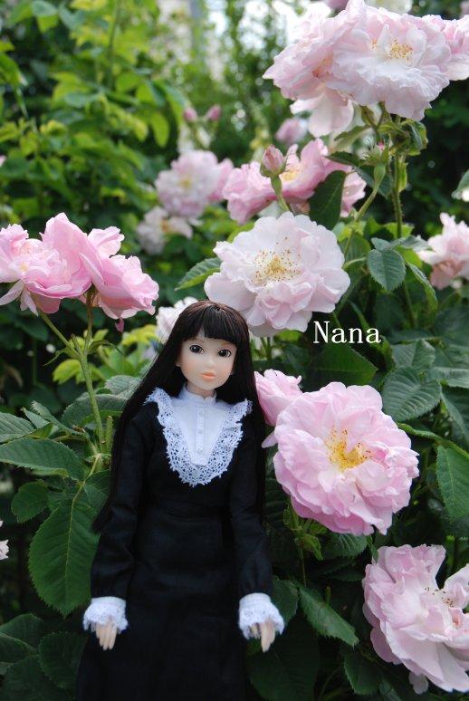 rosegarden1-21.jpg