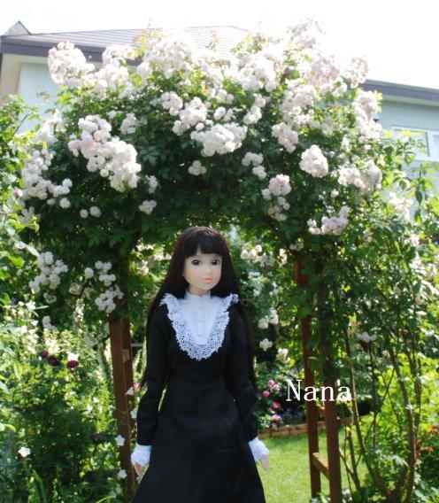 rosegarden1-24.jpg