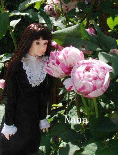 rosegarden1-28.jpg