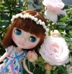 rosegarden1-4.jpg