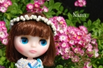 rosegarden1-7.jpg