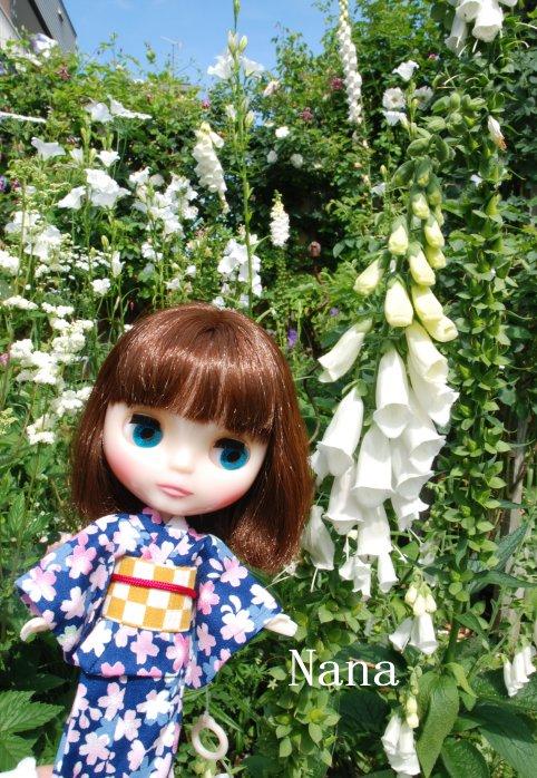 rosegarden1-9.jpg