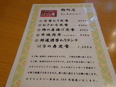DSC01160 (480x360)