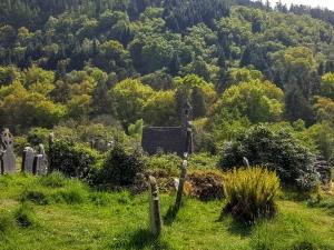 Glendalough0517