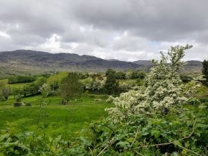 lougheskedonegal05172