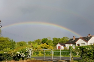 rainbow0517