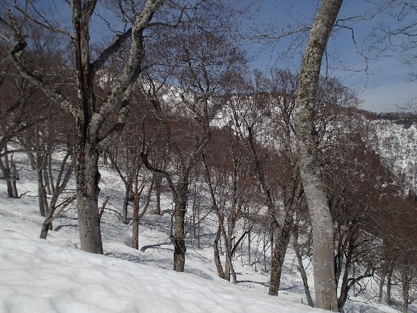 P5120110.jpg