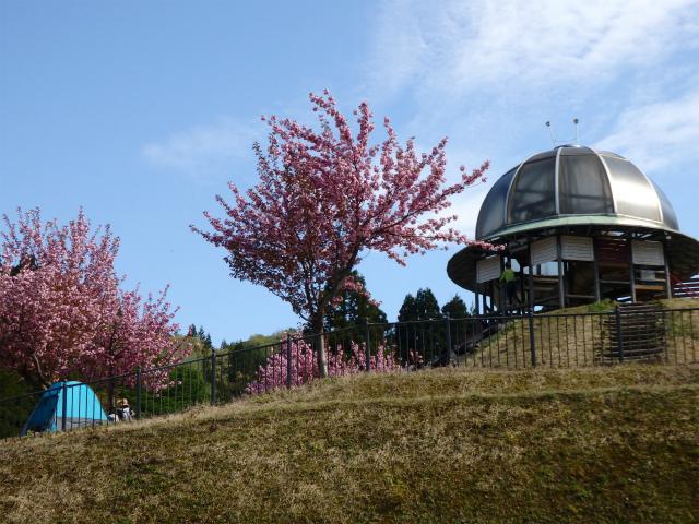 新潟県立こども自然王国2