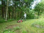 草刈り15