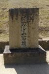 s8nagareyama.jpg
