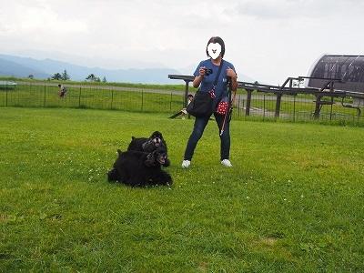 s-八ヶ岳16