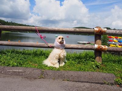 s-女神湖ちゃん