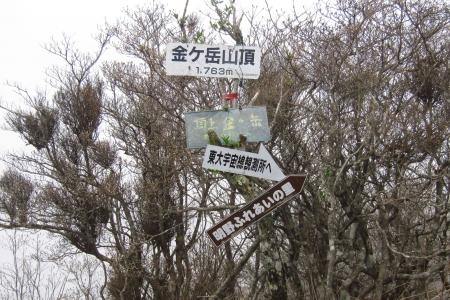 170415茅ヶ岳 (35)s