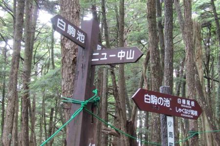 170713ニュウ~天狗岳 (9)s