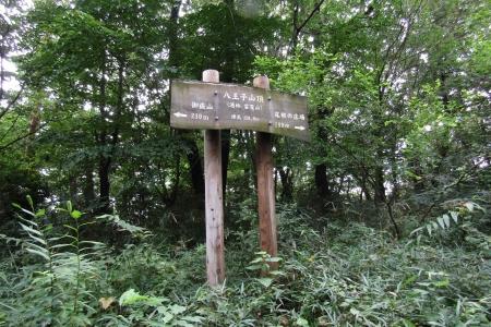 170820鹿田山 (7)s