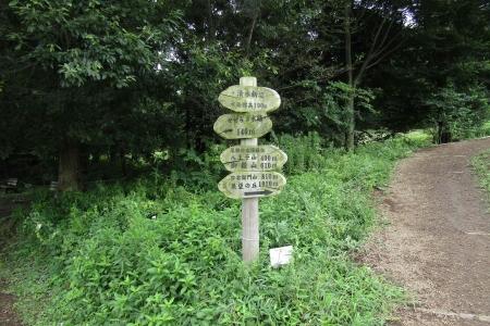 170820鹿田山 (8)s