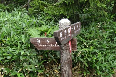 170828至仏山~悪沢岳~鳩待 (50)s