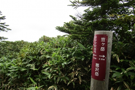 170828至仏山~悪沢岳~鳩待 (52)s