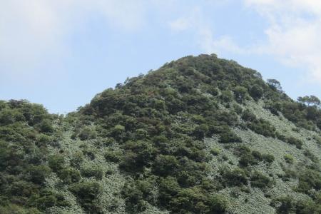 170914稲包山 (38)s