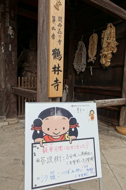 s-20176011 鶴林寺 (11)
