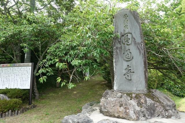 4 圓通寺 紫陽花 (1)