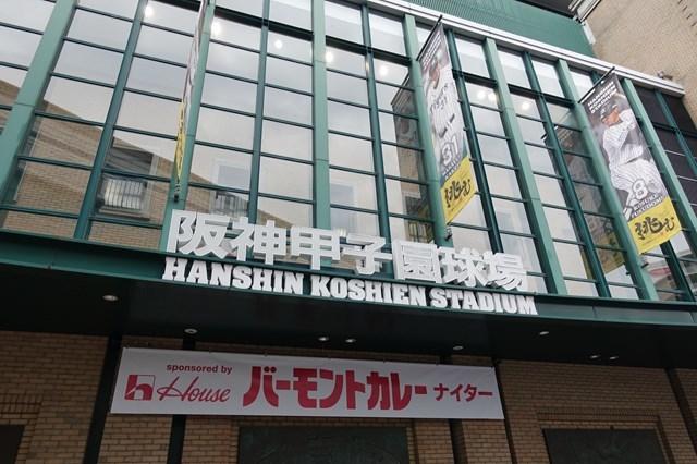 3 甲子園球場(阪神×巨人) (2)