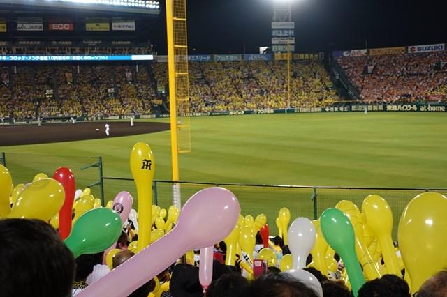 3 甲子園球場(阪神×巨人) (6)