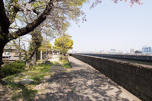 牛毛神社堤防の風景