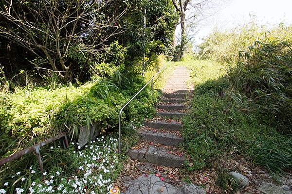 田中神明社に続く階段