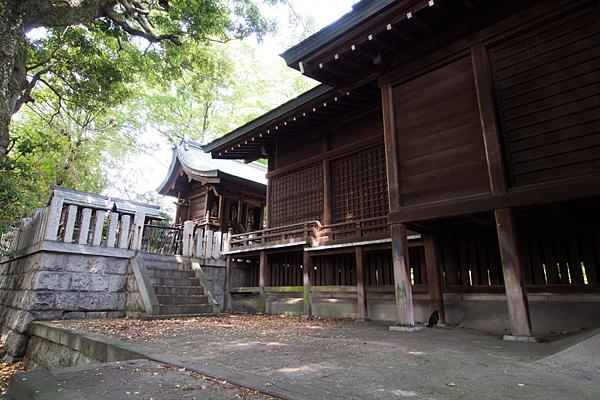 國玉神社社殿を横から