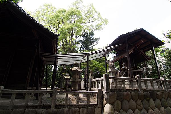 川前白山社本殿を横から