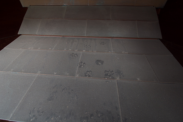 太神社屋根の猫の足跡