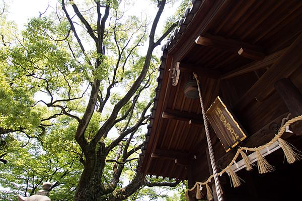 須佐之男社拝殿と額