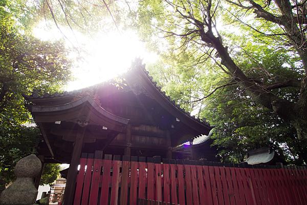 住吉社拝殿と本殿横から