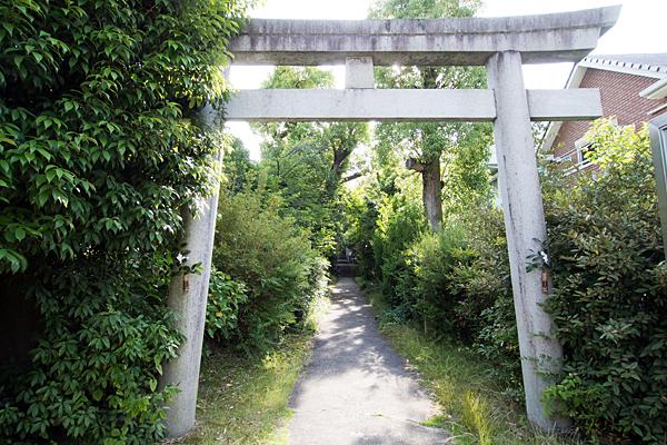 正及神社鳥居と参道
