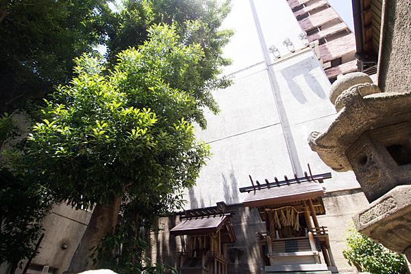 八白龍神社ホテルを見上げる