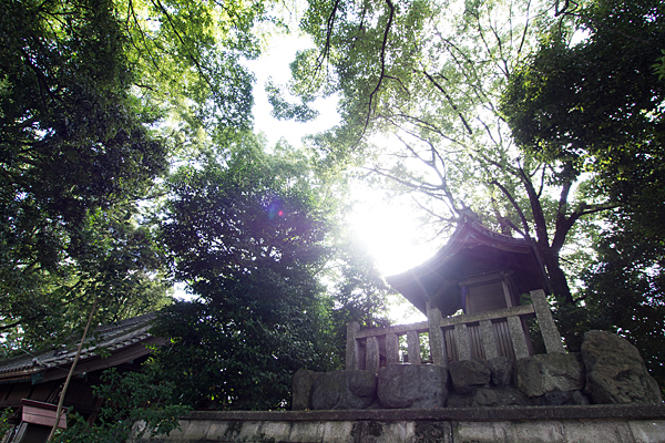 間黒神社本殿と太陽