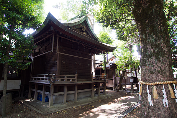 石仏白山社御神木と社殿