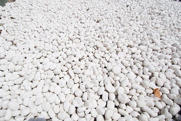 上野天満宮白石