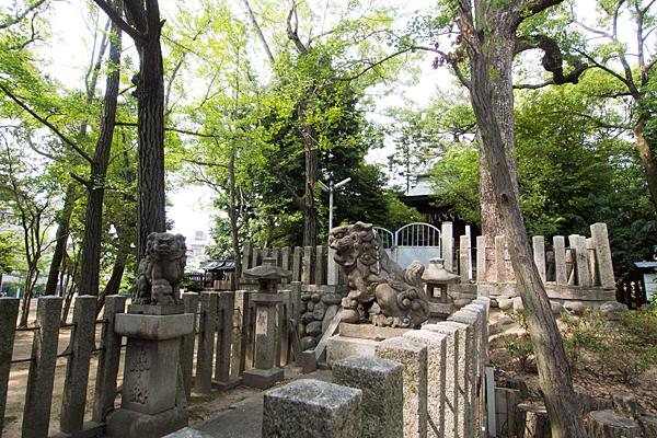 本願寺八幡社本殿横から