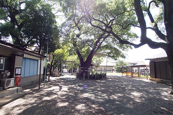 田光八幡社境内の風景