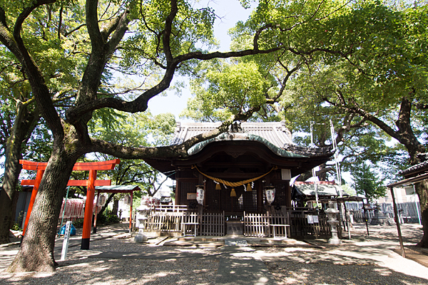 田光八幡社拝殿前の風景