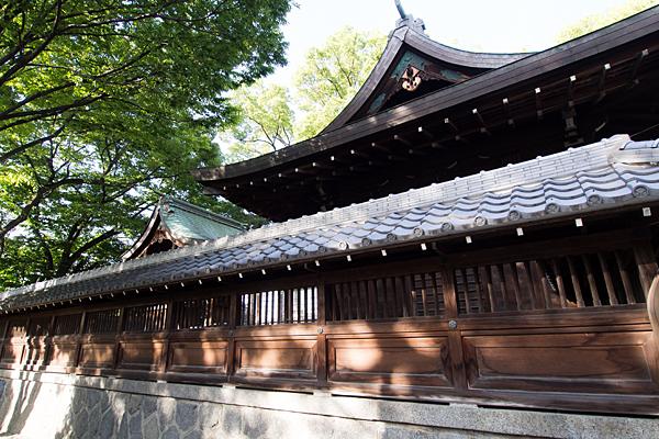 東八幡社社殿横から