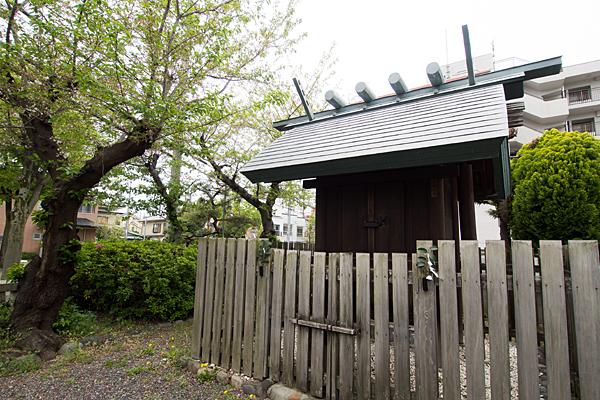 青衾神社の社と桜の木
