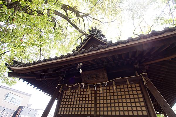 熊野社拝殿