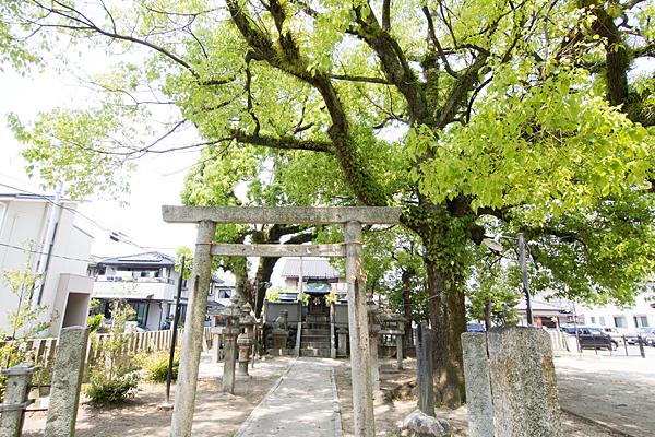 春日神社二の鳥居